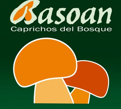 diseno-fotografia-imagen-agencia-creativa-marketing-basoan-logo